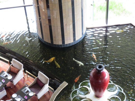 InterContinental Johannesburg Sandton Towers : Koi pond from above