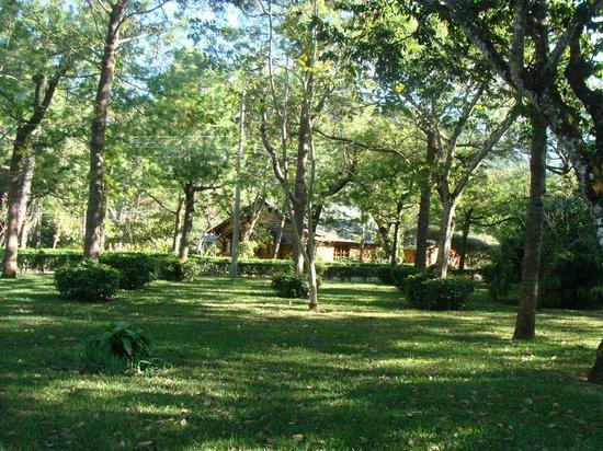 Santa Leticia: Zona verde