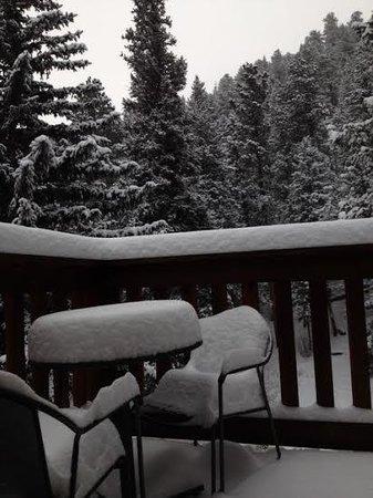 StoneBrook Resort: Our last morning snowfall