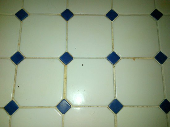 The Lodge at Uxmal: Unswept, unmopped bathroom floor with nasty discolored grout.