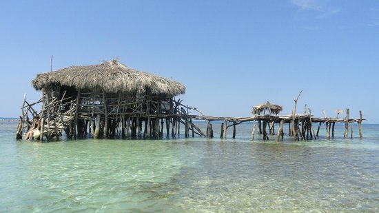 Floyd's Pelican Bar : Enjoying the warm waters