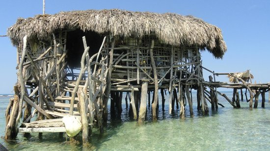 Floyd's Pelican Bar : One of a kind