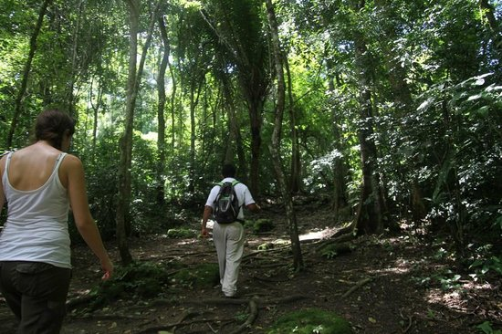 Gaia Riverlodge: tour gaia - the absolute best tours in the mayan forest