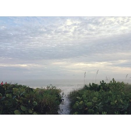 Gulf Breeze Cottages : View from our patio