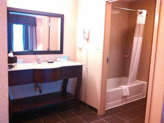 Hampton Inn & Suites Phenix City - Columbus Area: sink outside bathroom