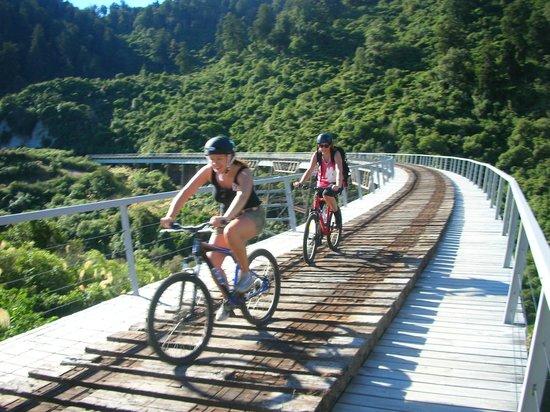TCB Ski Board and Bike : Ohakune Old Coach Road transport and bike rental.