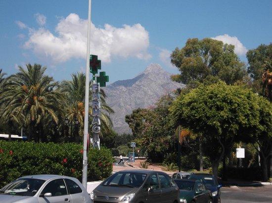 PYR Marbella Hotel: Views