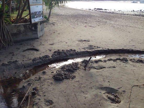 Baan Laanta Resort & Spa: Scarico delle fogne davanti alla spiaggia dell albergo(((