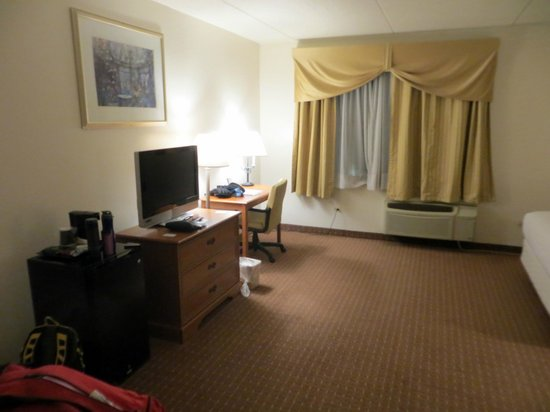 Chicago South Loop Hotel: Room