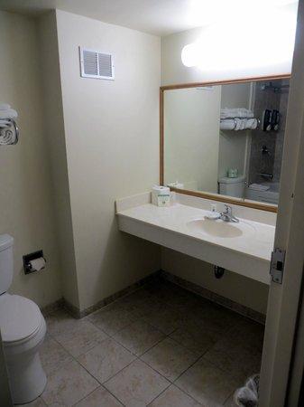 Chicago South Loop Hotel: Bathroom