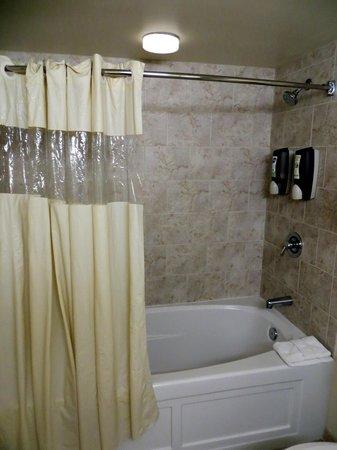 Chicago South Loop Hotel : Bathroom