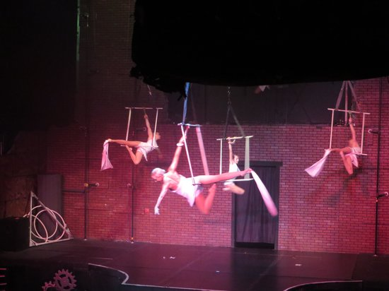 AntiGravity Orlando: Christmas show