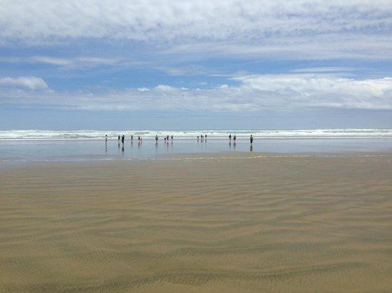 Explore - Dune Rider Cape Reinga : 90 Mile Beach