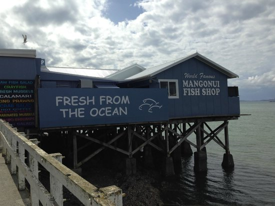 Explore - Dune Rider Cape Reinga : Mangonui Fish Shop