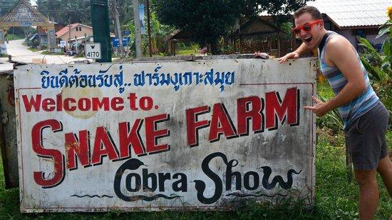 Samui Snake Farm: Sign