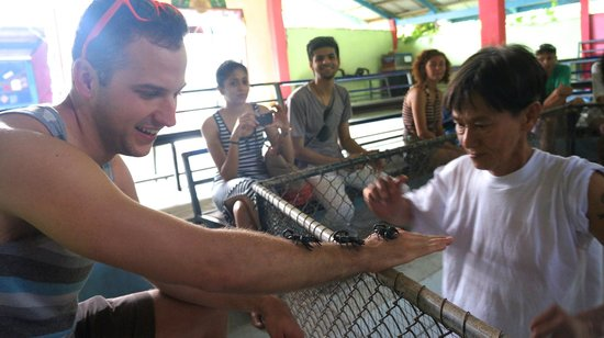 Samui Snake Farm: Out of my comfort zone...