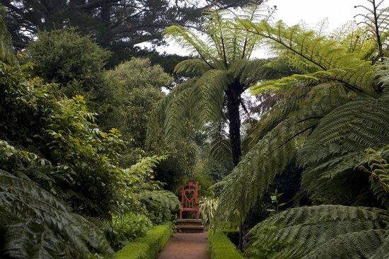 Alice in Wonderland themed throne in the Garden at Larnach Castle
