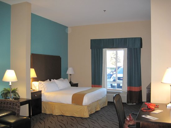 Holiday Inn Express & Suites Havelock: Pet-friendly room with King bed