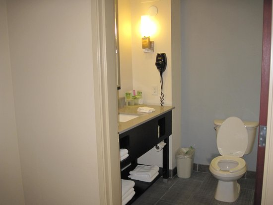 Holiday Inn Express & Suites Havelock: Bathroom