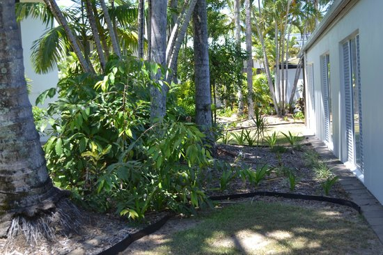 The Shores Holiday Apartments: grounds outside the unit