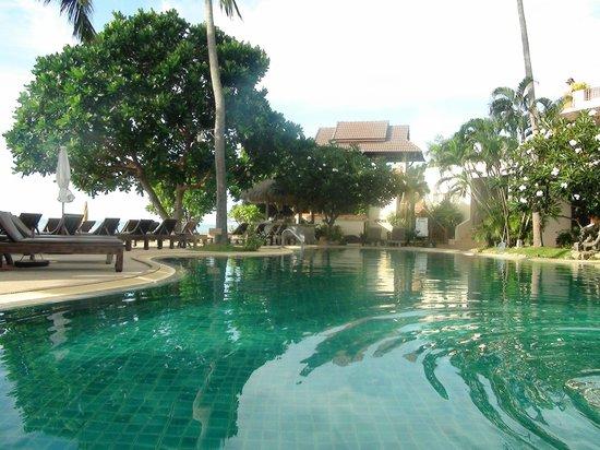 Aloha Resort : Бассейн