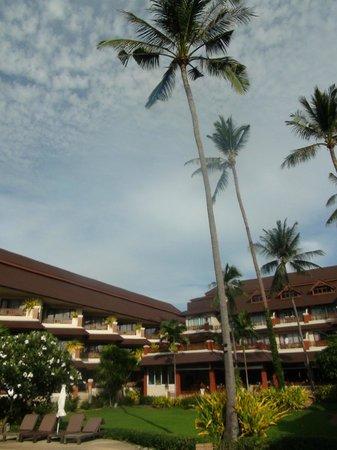 Aloha Resort : основной корпус