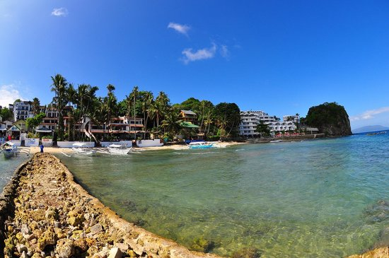 Action Divers: Small La Laguna beach