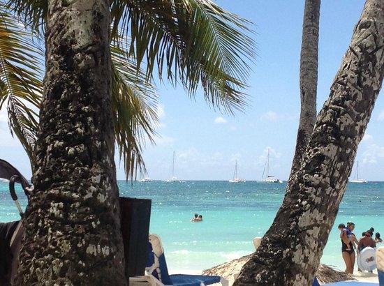Dreams La Romana Resort & Spa: View of the ocean from the beach