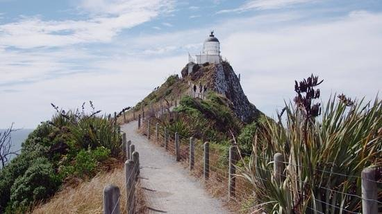 Cardno's Accommodation: Nugget point lighthouse