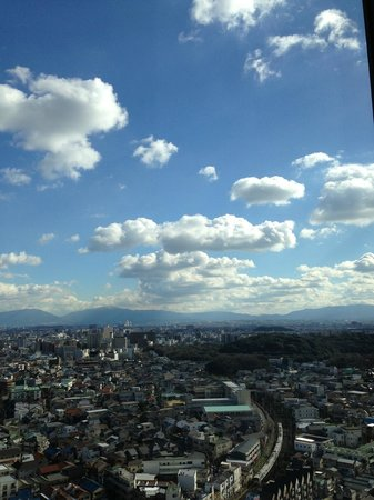 Sakai City Hall Observatory Flour: great weather