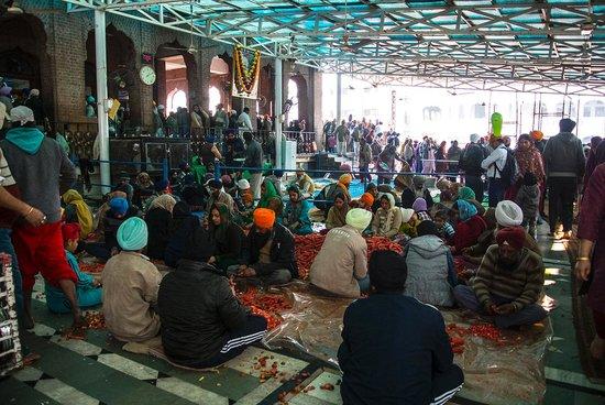 Guru-Ka-Langar: cleaning vegitables