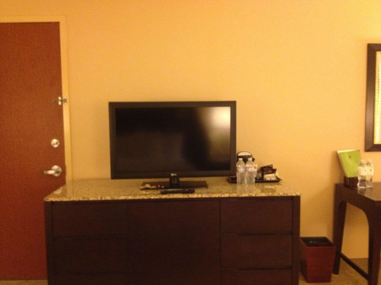 DoubleTree by Hilton Hotel Santa Ana - Orange County Airport: King Room TV