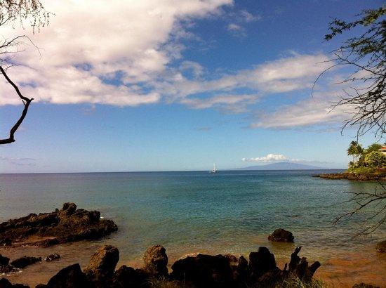 Aloha Kayaks Maui: Perfect day for kayaking