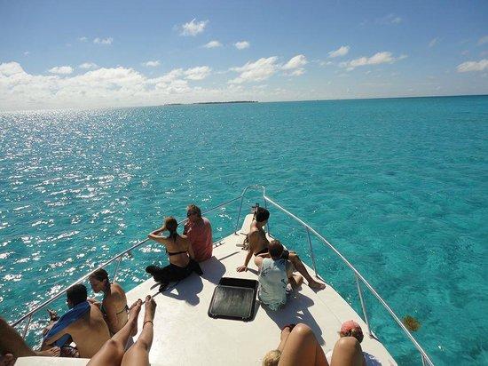 Amigos Del Mar Dive Shop: front of the boat
