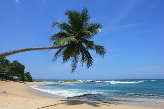 Tangalle, Sri Lanka: Тангалле, Шри-Ланка
