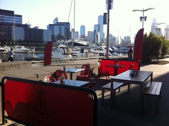 The view of the docklands from the Mad Duck Cafe's al fresco dining area