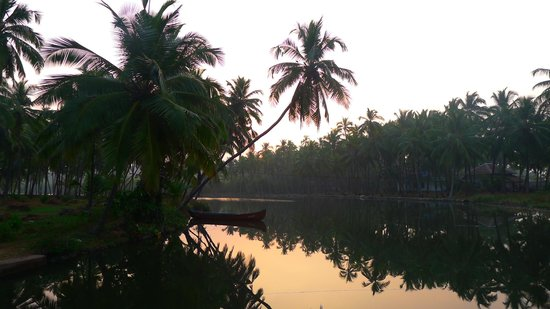 Satin Sand Beach Resort: The backwaters which are a short walk from the property