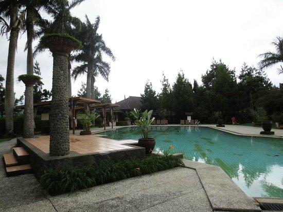 Puteri Gunung Hotel: Pool view