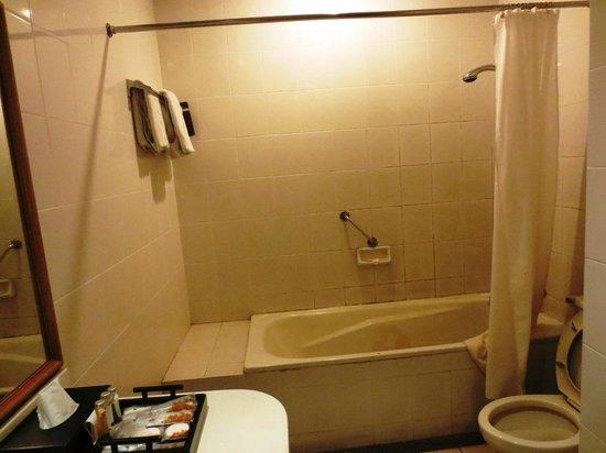 Puteri Gunung Hotel: Dirty Bathroom