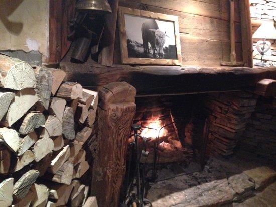 La Ferme des Trois Capucines : Fireplace