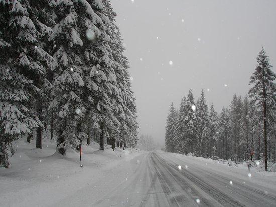 Hotel Wagner Die Kleine Zauberwelt: Красота зимнего леса