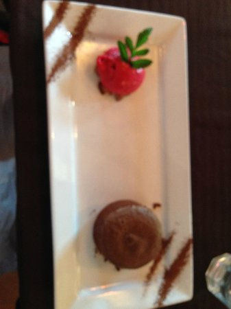 Frog and Kiwi: Chocolate fondant dessert with berry gelato
