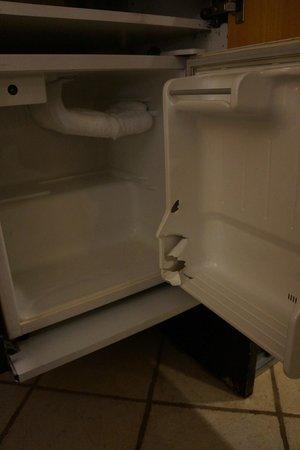 Daniel Dead Sea Hotel: холодильник