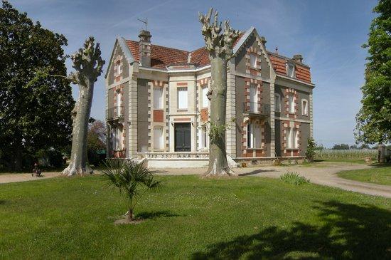 Saint-Emilion, França: Vue Sud Manoir XIXème
