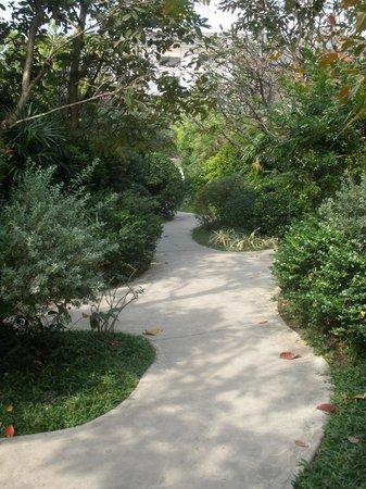 Yaiya Hua Hin : Garden path