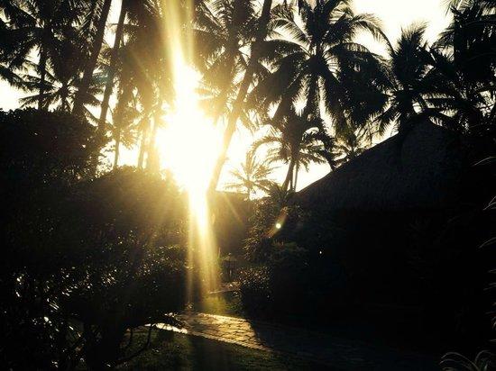 Bamboo Village Beach Resort & Spa: Morgens um 6:30 Uhr! Ausblick unserer Bungalow