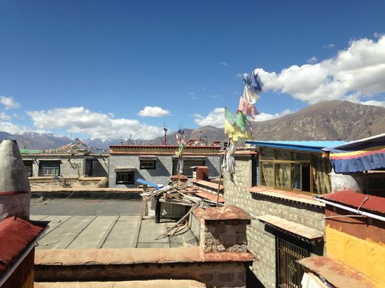 House Of Shambhala: Roof top lounge view #1