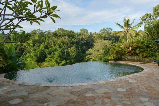 The Royal Pita Maha: The swiming pool & view