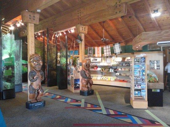 Arataki Visitor Centre: inside centre