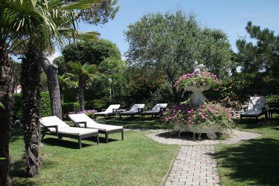 Hotel Vina del Mar Pineta: Giardino